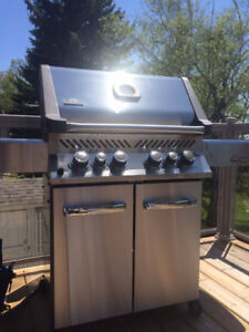 ✅NAPOLEON BBQ stainless steel BBQ ⚡️ FREE delivery