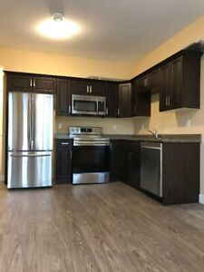 2 Bedrooms Brand-New Suite (larger-windows) Reece Ave Chilliwack