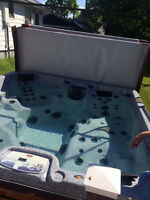 hot tub Arctic Spa - barely used - $4800