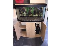 Fluval Vicenza 180 full set up MINT CONDITION £200ono