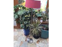 Modern standard lamp with deep pink fabric shade and stainless steel base.