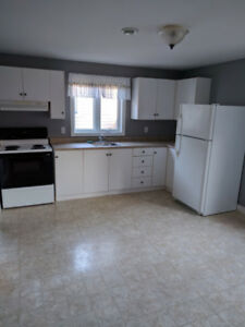 Spacious 1 Bedroom above ground apartment