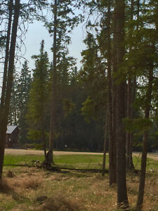 Candle Lake Lot Only $44,900 - In Desirable Culdesac Location