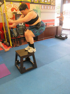 Fitness Classes on Ottawa street Windsor Region Ontario image 8