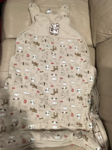 sleep bags for in home and car seat