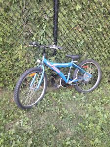 Vélo roue de 24 po en ALUMINIUM 7an à adulte valeur neuf 325$