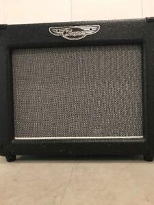 Traynor DG10 Guitar Practice Amp (PRICE REDUCED