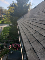 Roof repairs and more