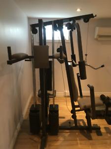 Weider Pro Gym