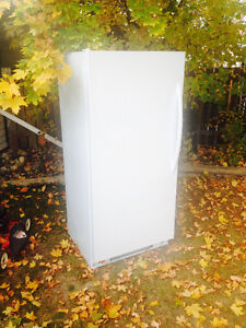 Barely used Stand-up Frost Free Freezer