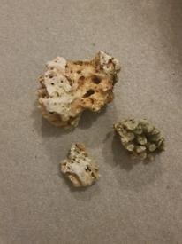 Aquarium/Ocean Rocks
