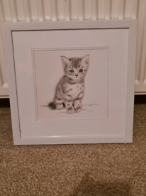FRAMED CAT PICTURE