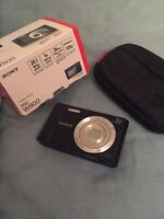 Sony camera with case