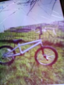 Silver BMX