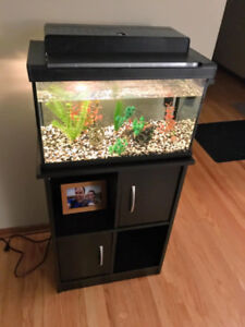 10gal Aquarium, Stand, and Accessories