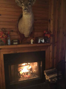 Dry Firewood Bags  Birch $35   Pine $25   CALL NOW !!! *********