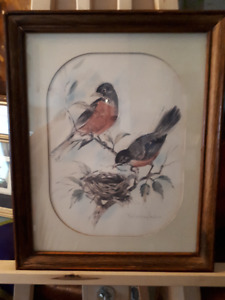Paul Whitney Hunter - watercolour of birds