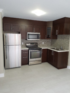 Newly Renovated Luxury Two Bedroom Apartment Ottawa East