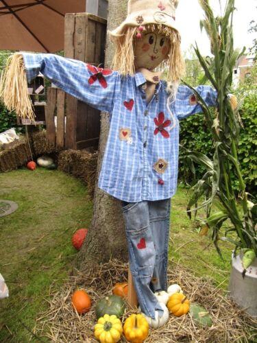 halloween yard decorating ideas