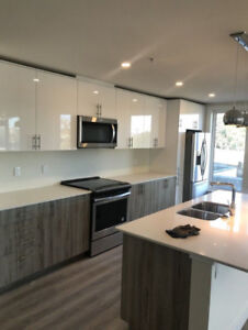 New Boss Plaza 1 Bed or 2 bed 2 Bath for January or December