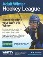 Adult Hockey League -Winter 2018-19