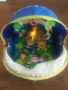 Fisher Price Bounce and Play Dome