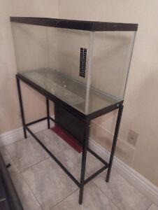 Aquarium and stand (33 gal)