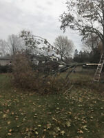 Tree Cutting/Removal LAWN CARE ARM'S LRM