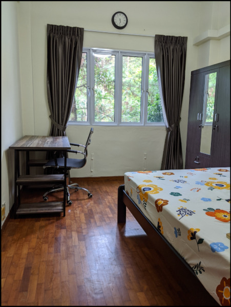 Large Condo room in Cavenagh Garden - Nr. Orchard Road / Someset MRT