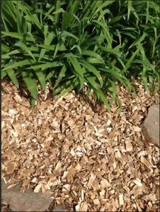 Fresh Cut Quality Cedar Wood Chips