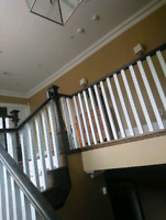 Professional Painter Service for homes