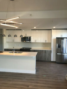 BRAND NEW LUXURY 2 BED 2 BATH 1800 SQ FT DECEMBER & JANUARY