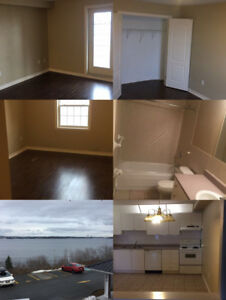 554 Bedford Hwy 2 bedroom apartment looking for a girl  roommate