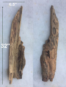 2 Pieces of Extra Large Driftwood Ideal for Larger Aquarium