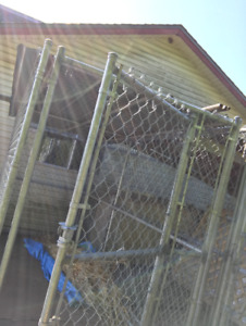 Chain Link Kennel with Roof
