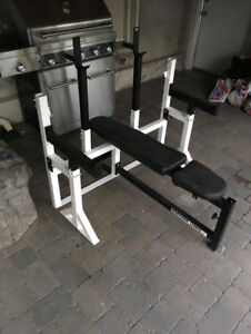 Northern Light Olympic Bench/Squat Rack Safety Weights Bar