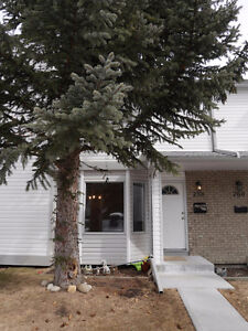Cozy, Newly Renovated 3 Bedroom Town House