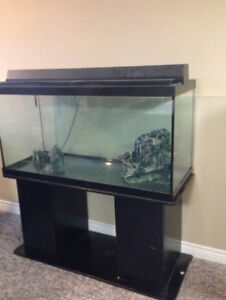 100 gallon fish tank with stand