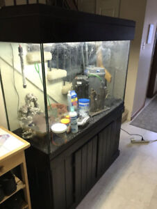 ❗️110 gallon aquarium - all equipment and wood stand/crown ❗️