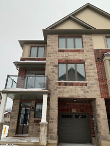 New TownHouse (Ancaster) end unit
