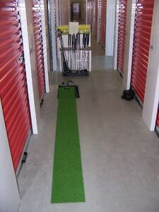 Electric Putting Green & 2 Putters