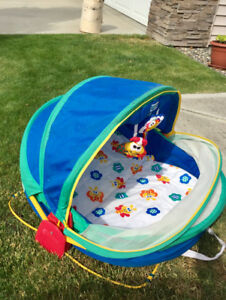 Fisher Price Baby Dome