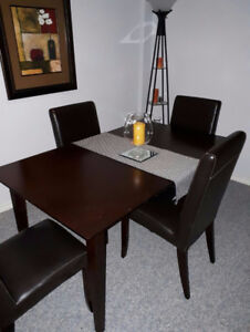 Dining Table Set (moving sale)