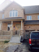 BRAND NEW HOUSE in Brampton for Rent!