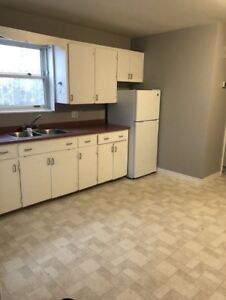 SPACIOUS 2 BEDROOM APT.  HEAT, LIGHTS, SNOW REMOVAL, HOT WATER.