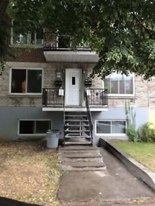 Investment Opportunity (5 PLEX - Old Rosemont)
