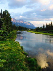 Canmore Real Estate Market Update, 2019
