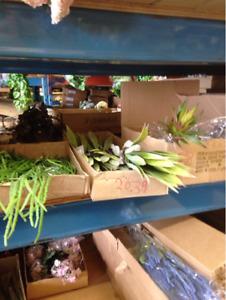 Florist wholesaler closing the doors