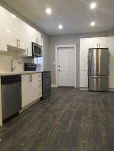 Amazing downtown 1 bed. Pictures don't do it justice