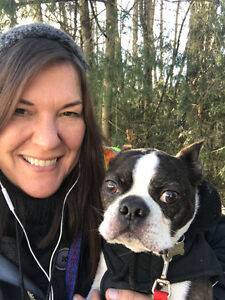 Caring & reliable dog walker & pet care ( licensed & bonded) North Shore Greater Vancouver Area image 1